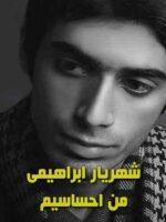 دانلود آهنگ من احساسیم درک من مشکله شهریار ابراهیمی